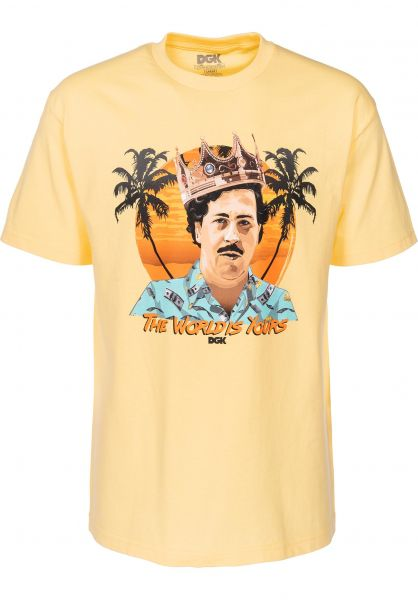 DGK T-Shirts World Is Yours banana Vorderansicht
