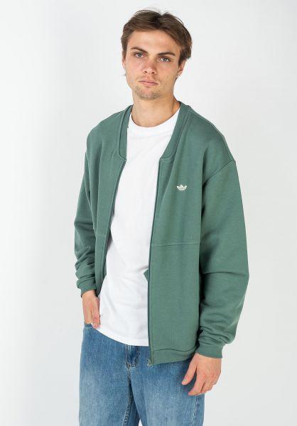 adidas-skateboarding Sweatshirts und Pullover Shmoo teal vorderansicht 0422861