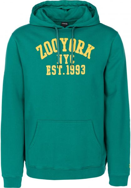 Zoo York Hoodies Branch Arch huntergreen vorderansicht 0445115