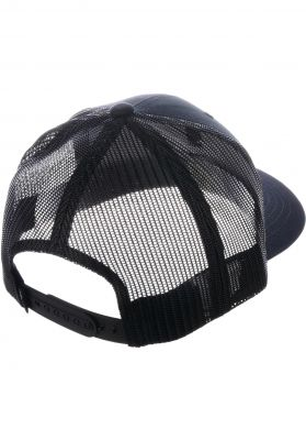 Reell Curved Trucker
