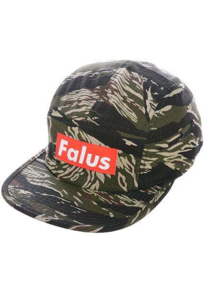 Falus Caps Box Logo camo vorderansicht 0566258