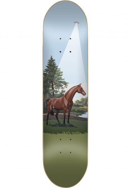 Skate-Mental Skateboard Decks Motta Horse Abduction/ Books multicolored Vorderansicht