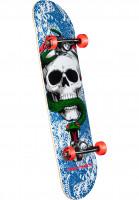 Powell-Peralta Skateboard komplett Skull & Snake one off-blue-red Vorderansicht
