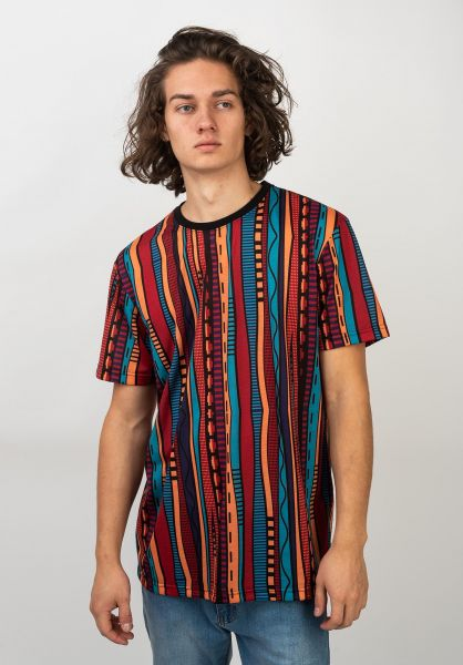 iriedaily T-Shirts Theodore multi vorderansicht 0320397