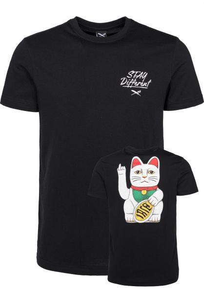 iriedaily T-Shirts Bye Bye Cat black Vorderansicht