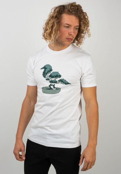 Cleptomanicx T-Shirts Bonsai white vorderansicht 0320567