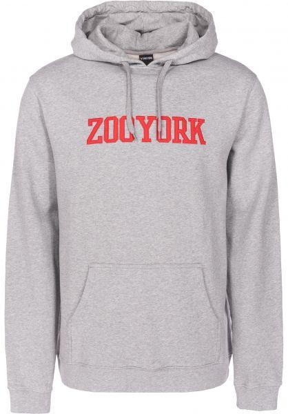 Zoo York Hoodies College heathergrey vorderansicht 0445113