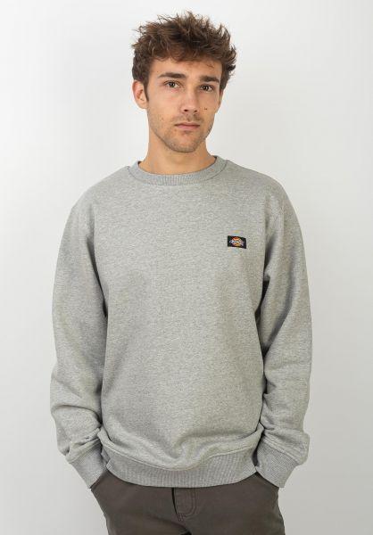 Dickies Sweatshirts und Pullover New Jersey greymelange vorderansicht 0422728