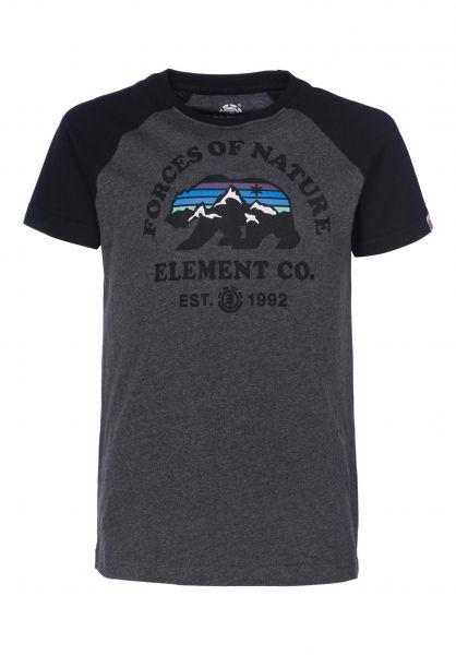 Element T-Shirts Vista Raglan Kids charcoalheather Vorderansicht