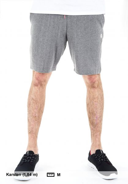 Element Shorts Cornell WK heathergrey Vorderansicht