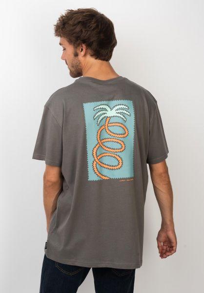 Billabong T-Shirts Companion pewter vorderansicht 0320137