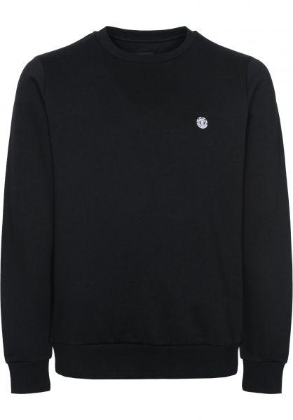 Element Sweatshirts und Pullover Cornell flintblack Vorderansicht