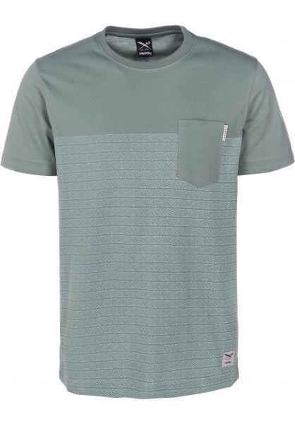 iriedaily T-Shirts Tahiti berylgrey vorderansicht 0397457