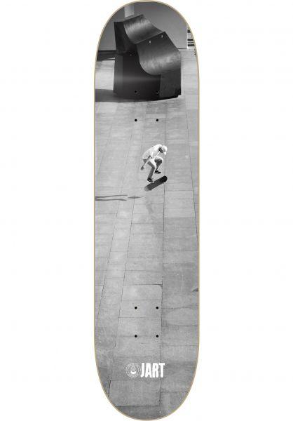 JART Skateboard Decks Macba Life grey Vorderansicht