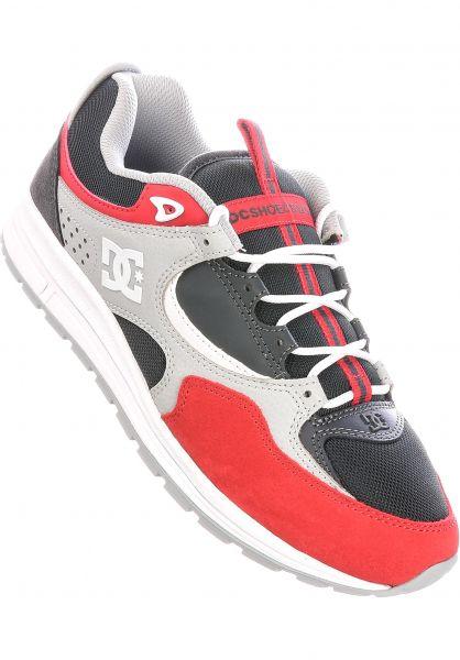 DC Shoes Alle Schuhe Kalis Lite grey-red vorderansicht 0603876