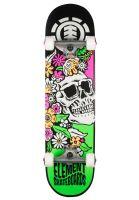 element-skateboard-komplett-aloha-multicolored-vorderansicht-0162545