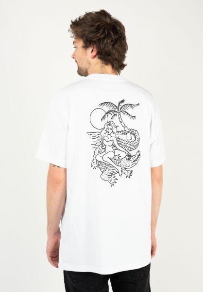 Dickies T-Shirts JF Graphic white vorderansicht 0323233