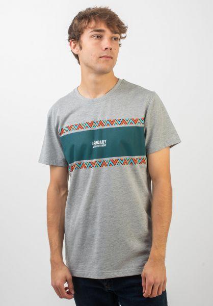 iriedaily T-Shirts Monte Noe greymelange vorderansicht 0320402