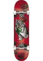 dgk-skateboard-komplett-divine-red-vorderansicht-0162721