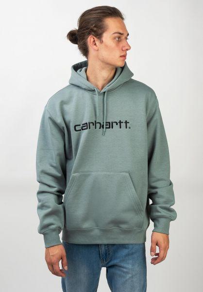 Carhartt WIP Hoodies Hooded Carhartt Sweatshirt cloudy-black vorderansicht 0444970