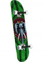 powell-peralta-skateboard-komplett-vallely-elephant-green-vorderansicht-0162200