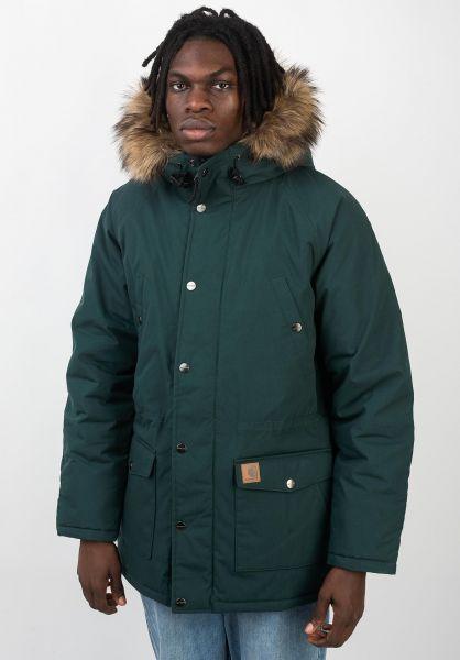 Carhartt WIP Winterjacken Trapper Parka darkfir-black vorderansicht 0123040