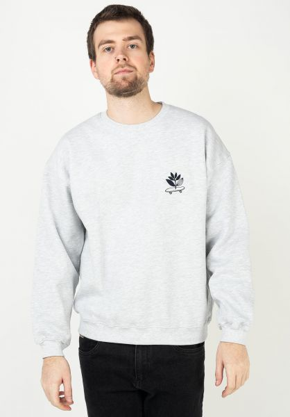 Magenta Sweatshirts und Pullover Cruise ash vorderansicht 0423038