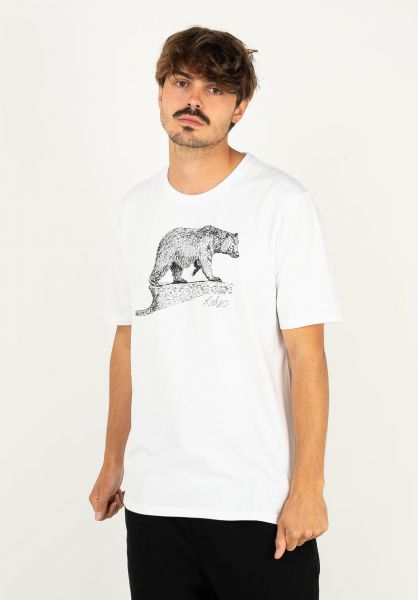 Rules T-Shirts Bear Scribble white vorderansicht 0398511