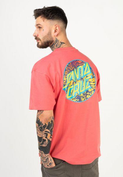 Santa-Cruz T-Shirts Roskopp Dot washedred vorderansicht 0322589