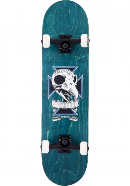 Birdhouse Skateboard komplett Skull 2 teal vorderansicht 0161374