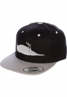 Atticus-Caps-Bird-black-grey-Vorderansicht