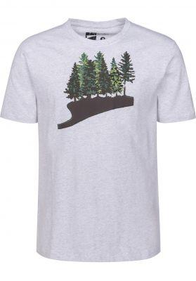 Rules Fir Forest