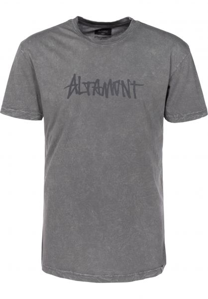 Altamont T-Shirts One Liner Wash grey Vorderansicht
