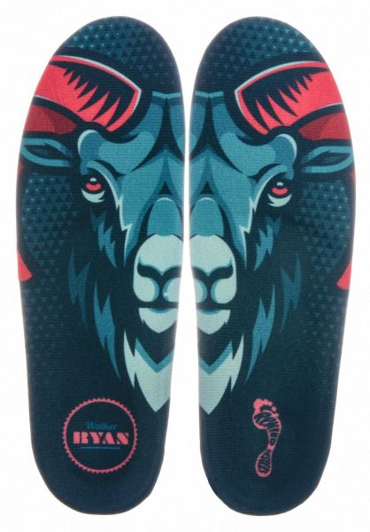 Remind Insoles Einlegesohlen Cush Walker x Ram multicolored vorderansicht 0249170
