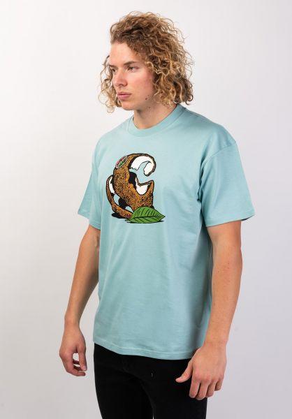Carhartt WIP T-Shirts Orange C softaloe vorderansicht 0320069