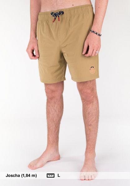 Element Shorts Howland Raft WK canyonkhaki Vorderansicht