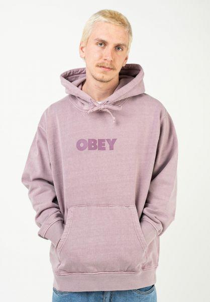 OBEY Hoodies Bold Ideals Sustainable Hood gallnut vorderansicht 0446332