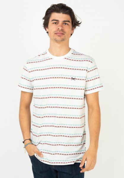 iriedaily T-Shirts Monte Noe Jaque 0 ecru vorderansicht 0323193