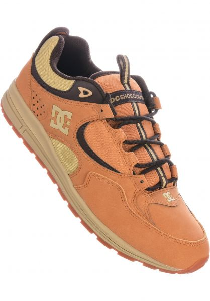 Kalis Lite SE DC Shoes All Shoes in