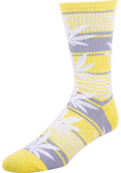 HUF Socken Plantlife Stripe aurorayellow vorderansicht 0631763