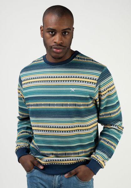 iriedaily Sweatshirts und Pullover Vintachi Crew berylgreen vorderansicht 0423112