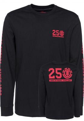 Element 25 Years