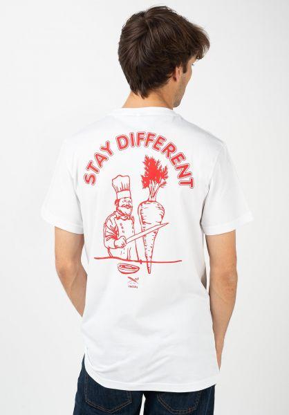 iriedaily T-Shirts Voener white vorderansicht 0322372