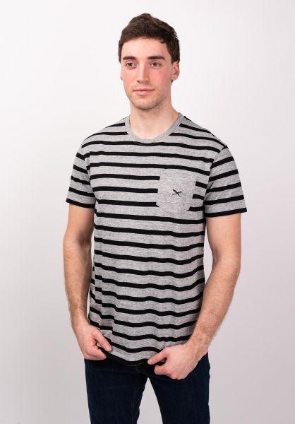 iriedaily T-Shirts Chamisso Stripe greymelange vorderansicht 0399722