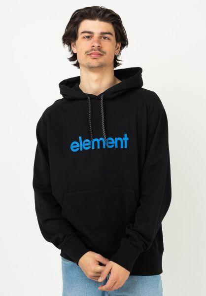 Element Hoodies x Future Nature Sphere flintblack vorderansicht 0446263