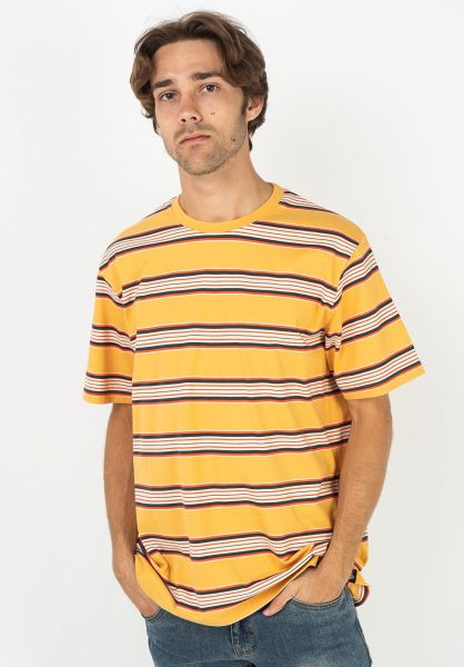 Dickies T-Shirts Lithia Springs apricot vorderansicht 0321326