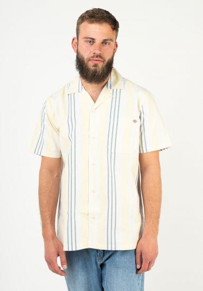 Dickies Hemden kurzarm Grove City Shirt mellowgreen vorderansicht 0401033