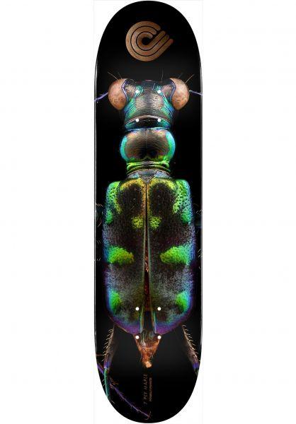 Powell-Peralta Skateboard Decks Levon Biss 248 Tiger Beetle black vorderansicht 0264885