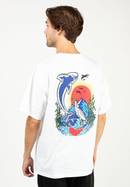 Polar Skate Co T-Shirts Mt. Fuji white vorderansicht 0324043