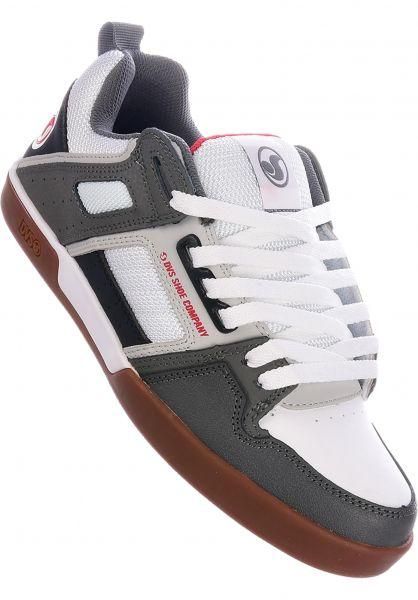 DVS Alle Schuhe Comanche 2.0+ white-grey vorderansicht 0604619